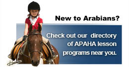 new_to_arabians